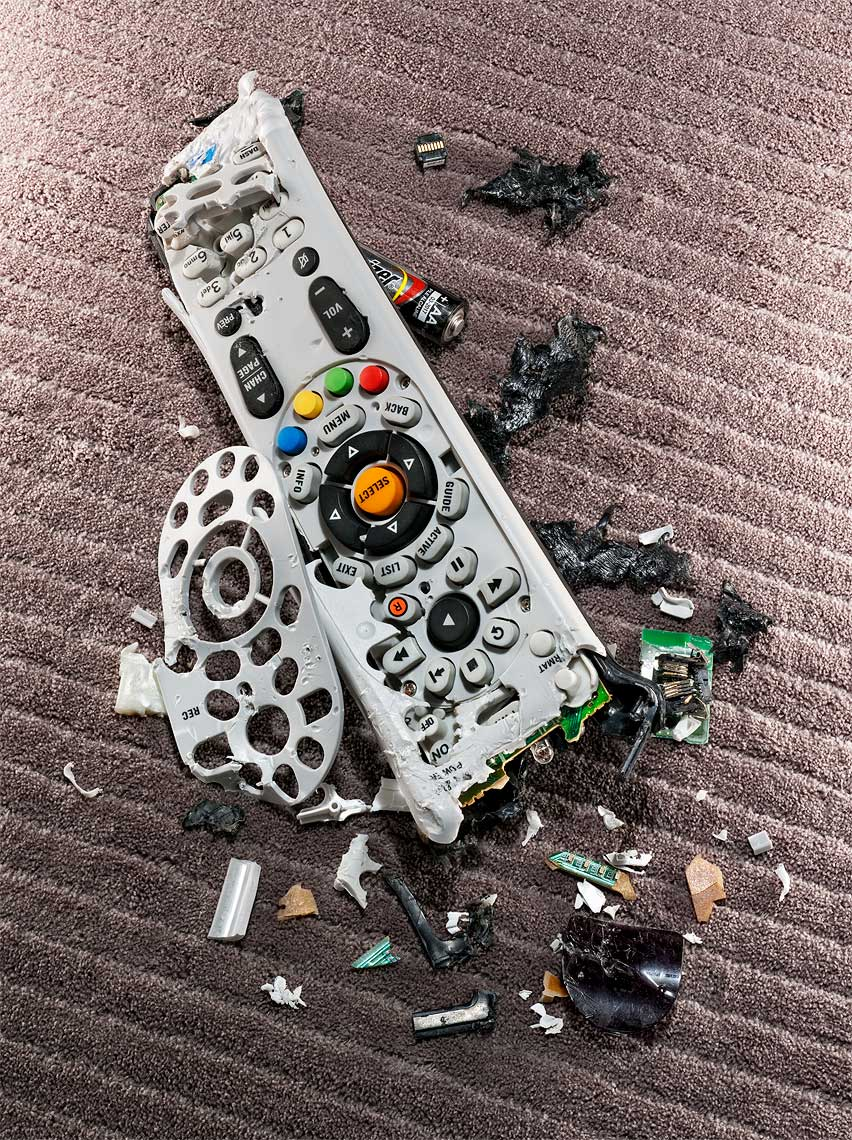 19-dog_chewed_tv_remote_best